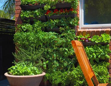 Wallgarden Vertical Garden System Turn A Wall Into A Garden